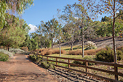 Scenic Riding Trails in Nellie Gail Ranch