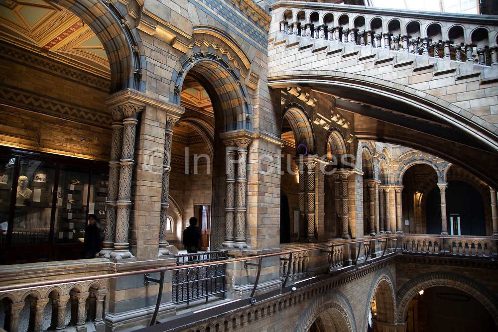 Hintze Hall, the main entrance space at the Natural History Museum in London, England, United Kingdom. The museum exhibits a vast range of specimens from various segments of natural history. The museum is home to life and earth science specimens comprising some 80 million items within five main collections: botany, entomology, mineralogy, paleontology and zoology. The museum is a centre of research specialising in taxonomy, identification and conservation.