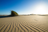 Oregon Dunes National Monument Photos