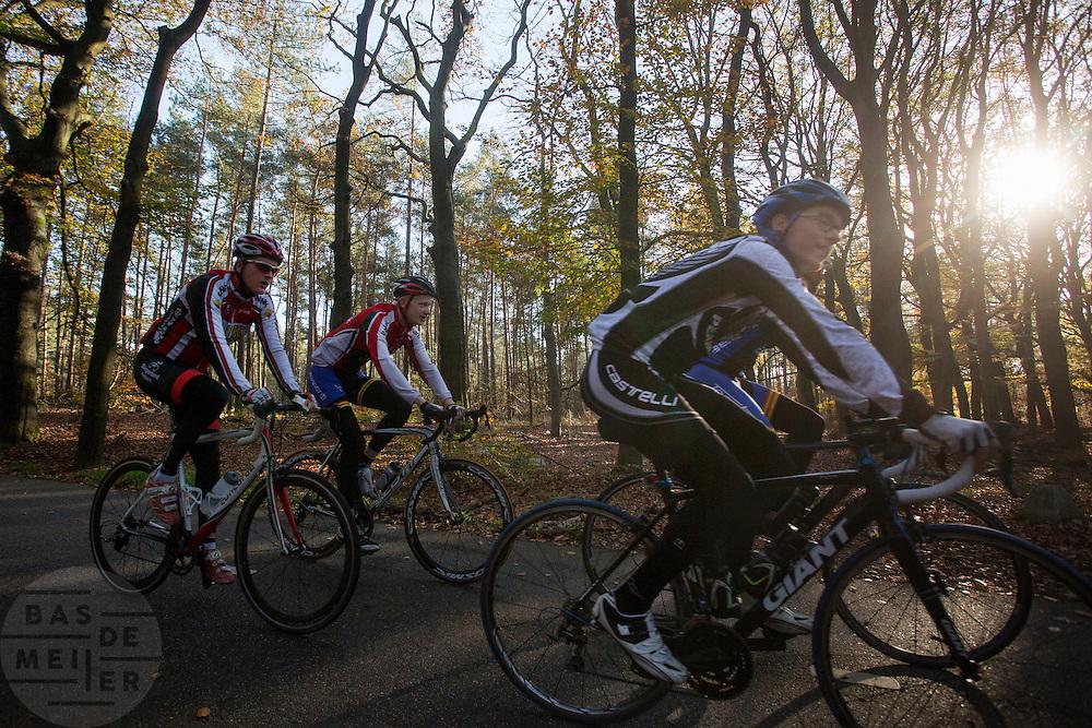 Bij Woudenberg genieten wielrenners van het mooie herfstweer.<br /> <br /> Cyclists enjoy the beautiful autumn weather near Woudenberg.