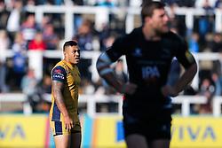 Tusi Pisi of Bristol Rugby looks on - Rogan Thomson/JMP - 08/10/2016 - RUGBY UNION - Kingston Park - Newcastle, England - Newcastle Falcons v Bristol Rugby - Aviva Premiership.