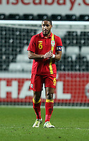 Pictured: Ashley Williams of Wales. Wednesday 06 February 2013..Re: Vauxhall International Friendly, Wales v Austria at the Liberty Stadium, Swansea, south Wales.