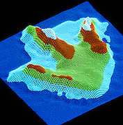 Paleontologist Jim Farlow's computer-mapped image of a Texas therapod track.