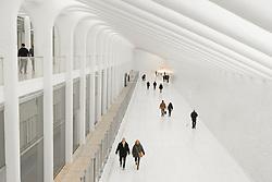 World Trade Center Transportation Hub. A project by Santiago Calatrava.