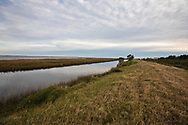 Marsh land eroding into the bayou, off Isle de Jean Charles, in South Louisiana.