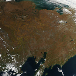 The Moderate Resolution Imaging Spectroradiometer (MODIS) on NASA's Aqua satellite acquired this image showing<br /> fall foliage along the Kolyma River in eastern Siberia on September 9, 2015. The lower image shows a broader view. Notice how no green vegetation remains visible in the northernmost part of the image. Meanwhile, valleys and other low-elevation areas still have plenty of green farther to the south.<br /> In autumn, the leaves on deciduous trees change colors as they lose chlorophyll, the molecule that plants use to synthesize food. However, chlorophyll is not a stable compound and plants have to continuously produce it, a process that requires ample sunlight and warm temperatures. When temperatures drop and days shorten, levels of chlorophyll do as well.<br /> Chlorophyll makes plants appear green because it absorbs red and blue sunlight as it strikes leaf surfaces. As concentrations of chlorophyll drop, the green fades, offering a chance for other leaf pigments - carotenoids and anthocyanins - to show off their colors. Carotenoids absorb blue-green and blue light, appearing yellow; anthocyanins absorb blue, blue-green, and green light, appearing red.<br /> References<br /> University of Wisconsin<br /> The chemistry of autumn colors. Accessed September 9, 2015.<br /> USDA Forest Service<br /> Why leaves change color. Accessed September 9, 2015.<br /> NASA image by Jeff Schmaltz, LANCE MODIS Rapid Response. Cropping and caption by Adam Voiland.<br />  *** Please Use Credit from Credit Field ***