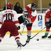 Brogdan Ivanov, Bulgaria, shoots during the Turkey V Bulgaria match during the 2012 IIHF Ice Hockey World Championships Division 3 held at Dunedin Ice Stadium. Dunedin, Otago, New Zealand. 21st January 2012. Photo Tim Clayton