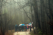 School children on a class excursion in the woods on a rainy day