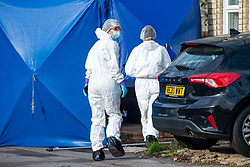 © Licensed to London News Pictures. 12/11/2020. Reading, UK. Forensic investigators walk towards a tent inside a property where a man died in the early hours of Thursday. Thames Valley Police is investigating the unexplained  death of a man in Reading. At approximately 04:55GMT South Central Ambulance Service called police officers to a house on Oxford Road, Reading. On attendance they found that a man in his fifties had died. A 44-year-old man, a 38-year-old man and a 43-year-old man all from Reading have been arrested on suspicion of murder. Photo credit: Peter Manning/LNP