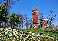 Springtime Blooms Carpet The Hills Below The Eden Park Water Tower, Cincinnati, Ohio, USA