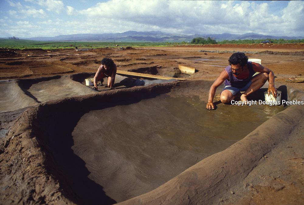 Hanapepe Salt Ponds, Hanapepe, Kauai, Hawaii (editorial use only, no model release)<br />
