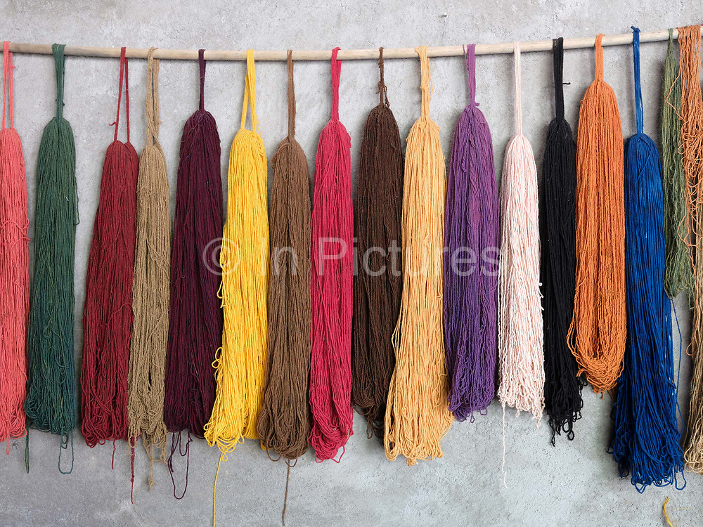 Naturally dyed woollen yarn hanging in the studio of master dyer Juana Gutierrez Contreras in the Zapotec village of Teotitlan del Valle, Oaxaca, Mexico on 24 November 2018. The natural dye materials are harvested in the Sierra Juarez mountains between October and November and other materials can be found in the courtyard gardens of Teotitlan. The plants are collected to make colourful dyes for blankets and other woven items
