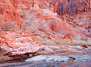 Winter Creek Meandering Through Redrock Canyon, Glen Canyon Recreational Area, Utah