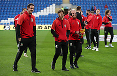 Wales v Republic of Ireland - 2018 FIFA World Cup Qualifying - Group D - 09 October 2017