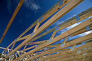 Timber frame (truss) for domestic house made from renewable plantation timber
