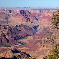 USA, Arizona, Grand Canyon. The Colorado River runs through the Grand Canyon, a UNESCO World Heritage Site, view from the south rim.