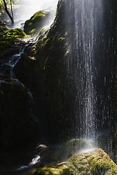 Waterfall at Gorman Falls, Colorado Bend State Park, Texas, USA