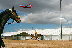 Overview paddock<br /> World Cup Final Jumping - Las Vegas 2007<br /> © Hippo Foto - Dirk Caremans
