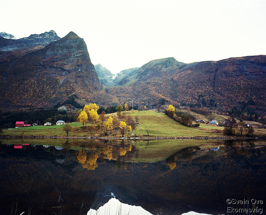 Autumn Dream.<br /> Photo: Svein Ove Ekornesvåg