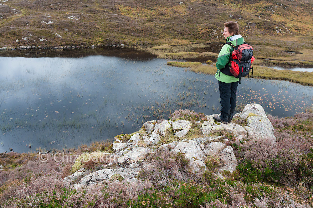 Looking E over Dock Tarn from one of the higher paths