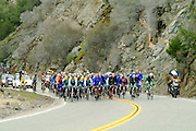 Road Bikers On The Angeles Crest Highway In Los Angeles