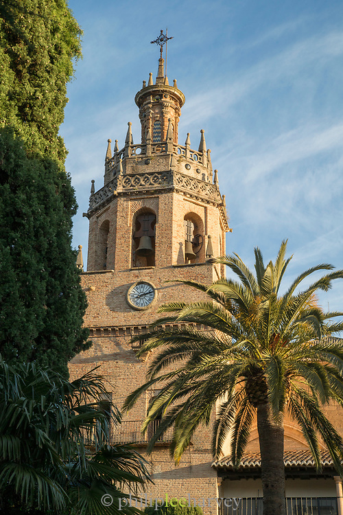 View of church tower with palm tree in foreground, Ronda, Andalusia, Spain