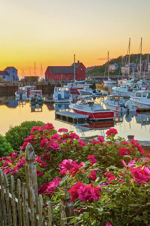 New England harbor scenery of Motif #1, fishing boats and flowers during dawn at Rockport Harbor on Cape Ann, Massachusetts.<br /> <br /> Beautiful Massachusetts fine art photography of Motif #1, fishing boats and flowers are available as museum quality photography prints, canvas prints, acrylic prints, wood prints or metal prints. Fine art prints may be framed and matted to the individual liking and interior design decorating needs:<br /> <br /> https://juergen-roth.pixels.com/featured/floral-sunrise-vibes-at-motif-number-one-juergen-roth.html<br /> <br /> Good light and happy photo making!<br /> <br /> My best,<br /> <br /> Juergen
