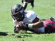Southern Illinois Salukis tight end MyCole Pruitt (4) falls after he was tackled on a first quarter carry. The Southern Illinois University - Carbondale (SIUC) Salukis defeated the host Southeast Missouri State University (SEMO) Redhawks 36-19 in an NCAA football game at Busch Stadium on Saturday September 21, 2013.