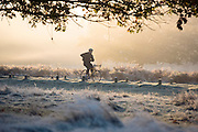 © Licensed to London News Pictures. 06/11/2014. Richmond, UK. A man cycles through a frosty scene.  People and animals during a frosty start to the day on 6th November 2014. Temperature fell across the country overnight. Photo credit : Stephen Simpson/LNP