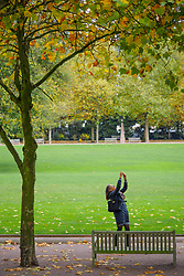 United States, Washington, Bellevue, woman taking photo with cell phone at Bellevue Downtown Park