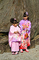 Shichi-Go-San literally seven-five-three, is a traditional rite of passage and festival day in Japan for three and seven year-old girls and five year-old boys, held annually on November 15. As Shichi-Go-San is not a national holiday, it is generally observed on the nearest weekend.  Boys who are aged three or five and girls who are aged three or seven are still dressed in kimono, many for the first time, for visits to shrines.  Western-style formal wear is also worn by some children.
