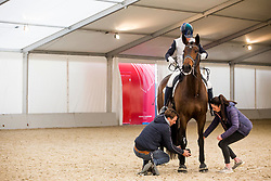 Serre Anne-Sophie, FRA, Actuelle de Massa<br /> Jumping Mechelen 2019<br /> © Hippo Foto - Sharon Vandeput<br /> 28/12/19