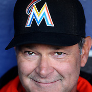 NEW YORK, NEW YORK - APRIL 12: Manager Don Mattingly, Miami Marlins, talks with the media in the dugout before the Miami Marlins Vs New York Mets MLB regular season ball game at Citi Field on April 12, 2016 in New York City. (Photo by Tim Clayton/Corbis via Getty Images)