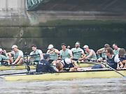 Putney, London, Varsity Boat Race, 07/04/2019,  Oxford V Cambridge, Men's Race,CUBC Celebrate, Crew: Dave BELL, <br /> James CRACKNELL, <br /> Grant BITLER, <br /> Dara ALIZADEH, <br /> Cullum SULLIVAN, <br /> Sam HOOKWAY, <br /> Freddie DAVIDSON, <br /> Natan WEGRZYCHI-SZYMCZYK, <br /> Cox, Matthew HOLLAND, Championship Course,<br /> [Mandatory Credit: Patrick WHITE], Sunday,  07/04/2019,  3:28:22 pm,