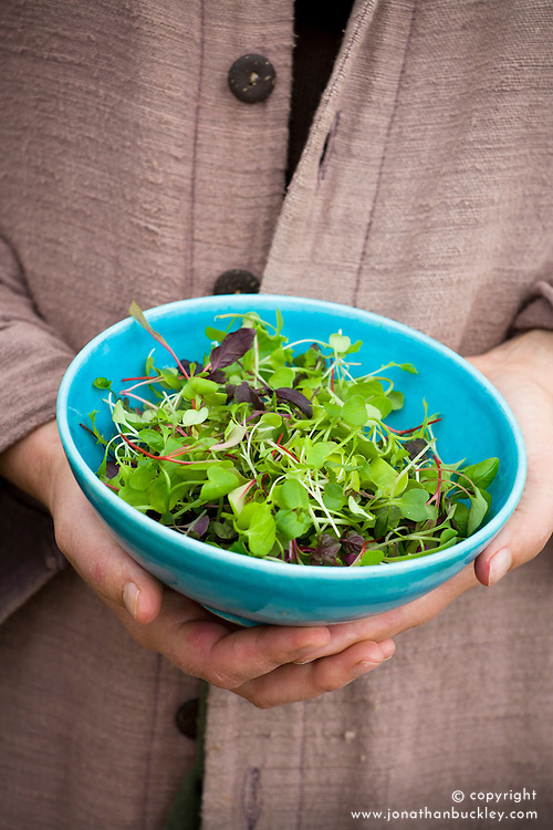 Holding turquoise bowl of microgreens (tiny baby salad leaves harvested when very young)