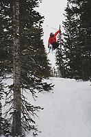 Thayne Rich skiing the trees at Alta, Utah, Wasatch Mountains, Utah.