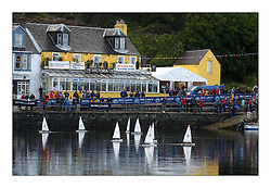 Yachting- RC Laser class sailing at the Bell Lawrie Scottish Series in Tarbert. ...Pics Marc Turner / PFM
