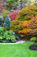 Fall foliage in the gardens at Queen Elizabeth Park in Vancouver, British Columbia, Canada