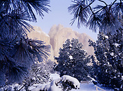 Inscription Rock at El Morro National Monument, New Mexico, framed by frost covered Ponderosa Pines, Pinyon Pines and Junipers, New Mexico.