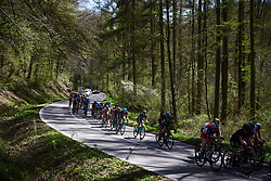 Trek Drops weave through the trees at La Flèche Wallonne Femmes 2018, a 118.5 km road race starting and finishing in Huy on April 18, 2018. Photo by Sean Robinson/Velofocus.com