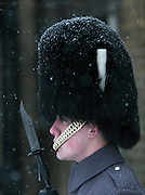 British Royal Guard on duty in the snow at Horseguards Parade, London, UK