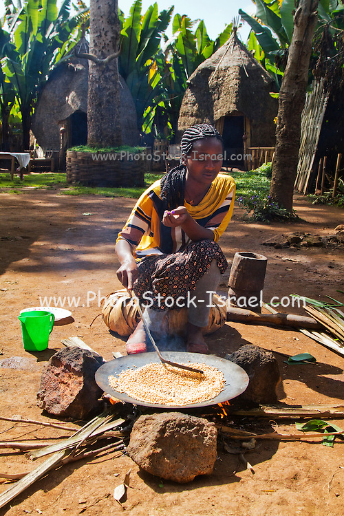Dorse woman roasts coffee beans. Photographed in the Omo Valley, Ethiopia