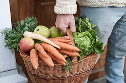 Mid section of a man holding basket full of vegetables in his hand standing in front of wholefood shop, Bavaria, Germany
