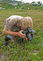 British herpetologist Mark O'Shea photographs a dog-faced water snake, Cerberus rynchops, in a meadow near Eraulo, in the Ermera district of Timor-Leste (East Timor). The snake was originally captured in a rice paddy in the Baucau District.