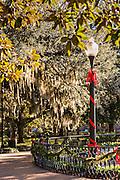 Christmas in Forsyth Park in Savannah, GA.