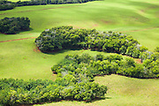 Aerial view of cleared cattle pasture and swaths of remaining forest on Kauai, Hawaii.