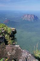 Tepuyes  Wichuj y Uripicay en la selva, Amazonas, Venezuela.