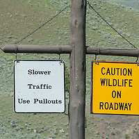 Road signs urge caution while driving in Yellowstone Park.