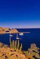 The Ursa Major (charter yacht) and sailboats, Agua Verde Bay, Sea of Cortes, Baja California Sur, Mexico