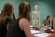 UGent, faculteit Geneeskunde en Gezondheidswetenschappen